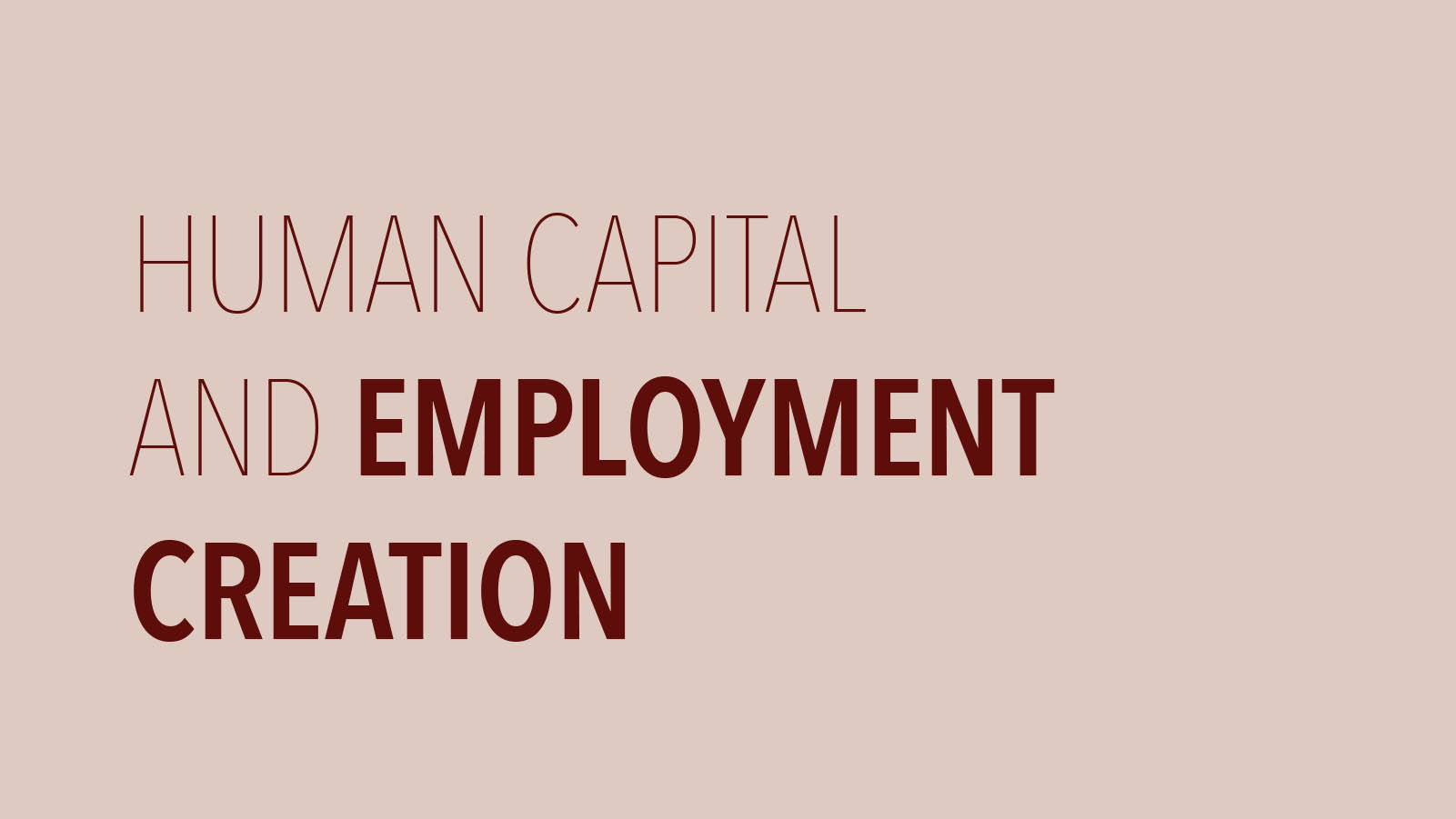 Human Capital and Employment Creation
